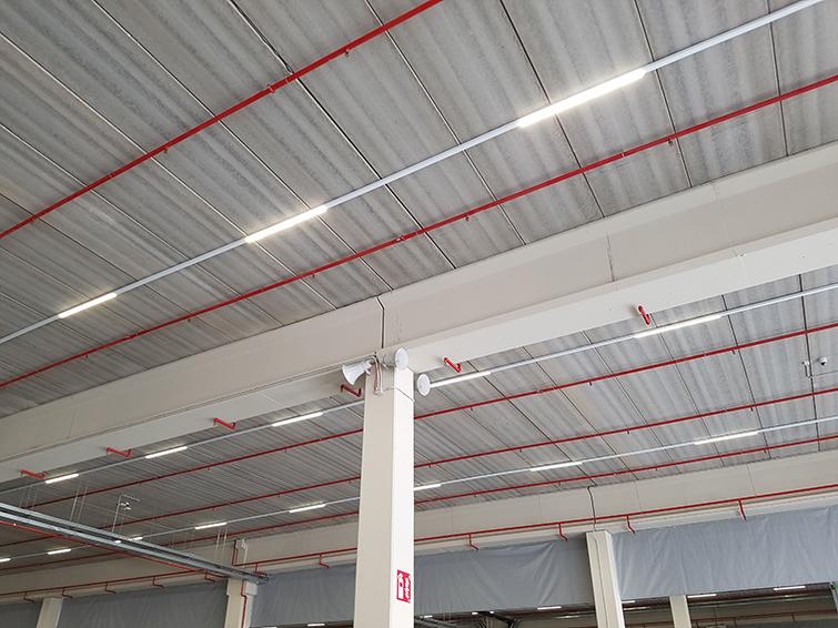 La iluminación natural se complementa con tecnología LED